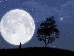 0812 6 5678 30 Nomor Cantik 11 Angka Simpati Perdana 0812 6567830 langit ichisti