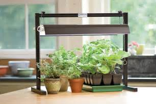 This tabletop grow light provides bright full spectrum light with