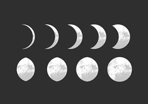 moon phase moon phase vectors free vector stock