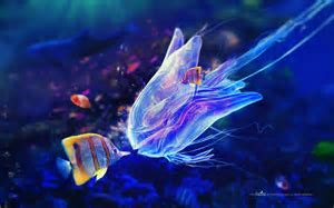Marine Life Wallpapers   Wallpaper Cave