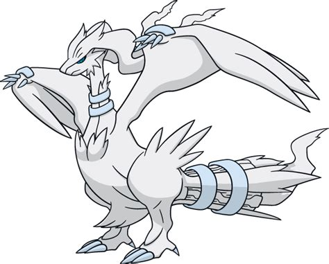 pokemon coloring pages reshiram free coloring pages of pokemon zekrom y reshiram