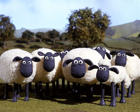 Shaun The Sheep 7 1 hazel shaun the sheep wiki fandom powered by wikia