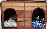 homemade insulated dog house urban vets animal hospital