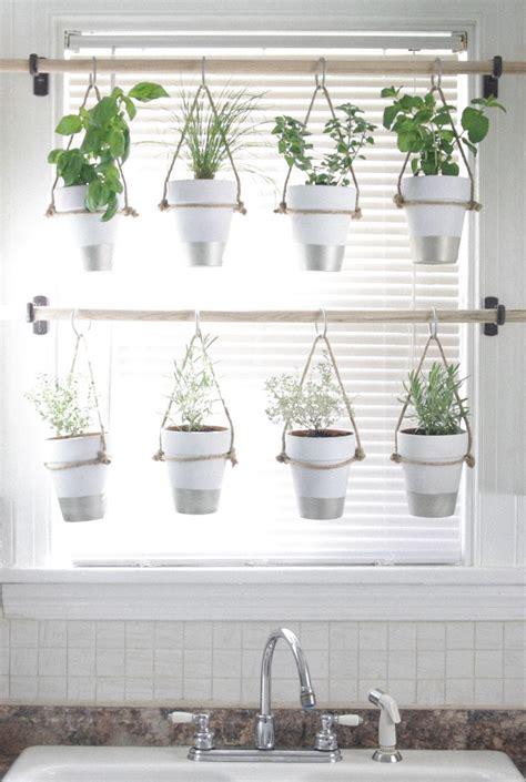 hanging window garden 25 best ideas about indoor hanging plants on pinterest