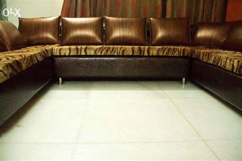 tiger print sofa 103 best images about tiger on pinterest tiger stripe