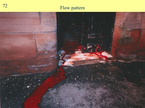 flow pattern definition blood bloodspatter