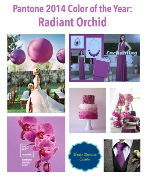 what color match purple collage 2 radiant orchid purple color 17 best images about pantone color of the year 2014