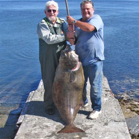 party boat fishing eureka ca eureka coast fish report eureka ca humboldt county