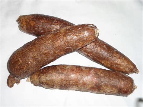 skinned root vegetable cassava bread