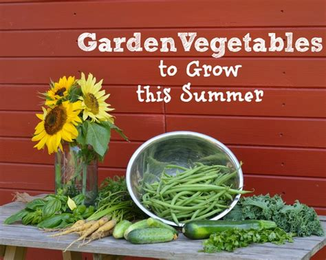 what to plant in summer vegetable garden garden vegetables to grow this summer it forward