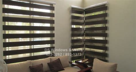 Colored Window Blinds Brown Choco Colored Window Shades Projects