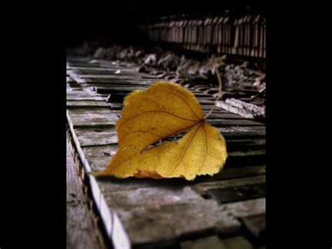 testo come foglie come foglie malika ayane