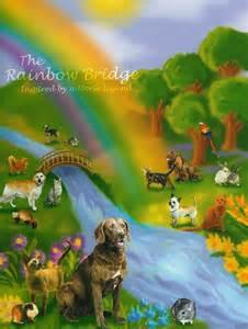 Rainbow bridge dog rainbow bridge