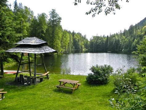 Cozy Cabins Nature Resort by Cabin Picture Of Cozy Cabins Nature Resort Lumby