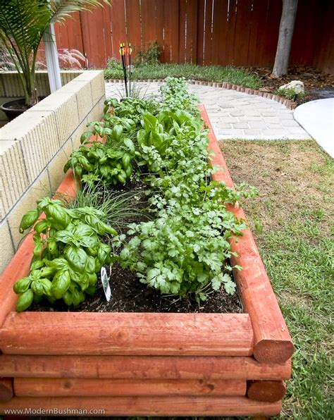 Diy Raised Bed Vegetable Garden For Under 24 Each Diy Raised Bed Vegetable Garden