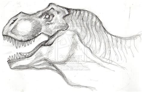 Drawing T Rex Dinosaur by T Rex Pencil Sketch By Sqitzow On Deviantart