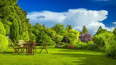 hd p nature  family garden scenery video royalty