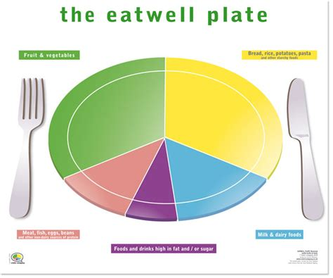 health phlet template image gallery healthy plate template