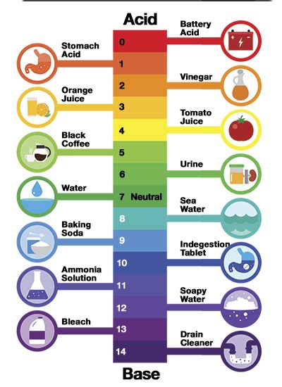 Termurah Fish All Ph Up what is ph and how to easily test it in your aquarium