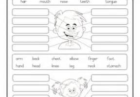 grade r worksheets archives page 6 of 17 e classroom