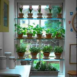 Kitchen Herb Garden Ideas by Stationary Window Designs 20 Window Decorating Ideas With