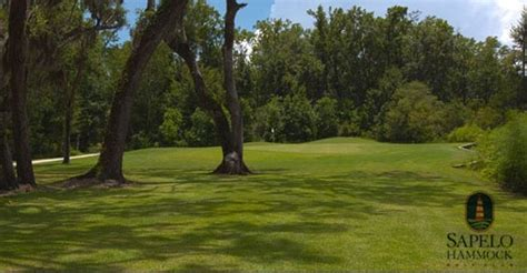 Sapelo Hammock Golf Club sapelo hammock a scenic coastal gem offers respite from hustle bustle