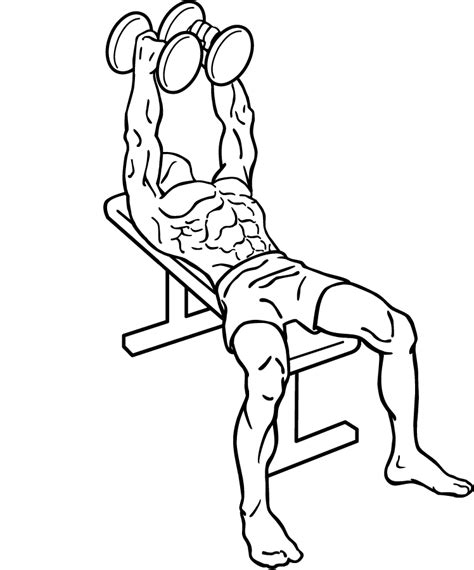 dumbbell bench press variations dumbbell flys isolate your pectorals with chest flys in