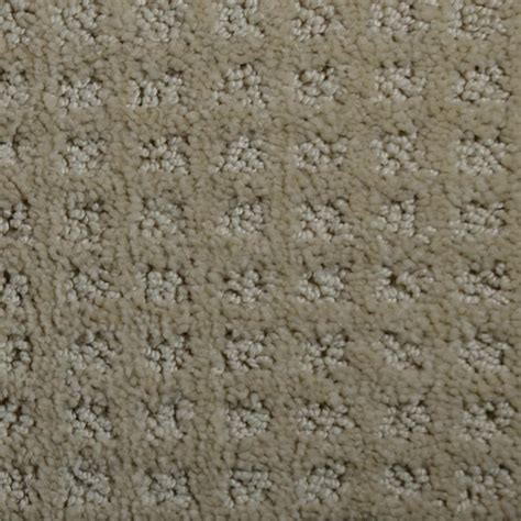 home decorators collection carpet sle traverse