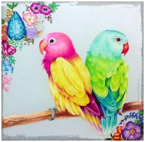 dibujos realistas con colores dibujos de p 225 jaros de colores para imprimir imagenes de