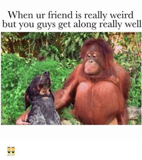 Funny Weird Memes - when ur friend is really weird but you guys get along