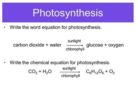 balanced equation  photosynthesis quora