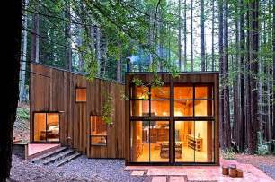 a cabin in the redwood forest home design garden