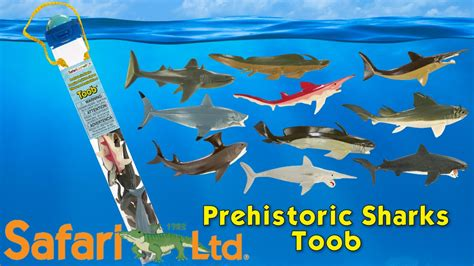 Safari Ltd Sharks Toob by Safari Ltd Prehistoric Sharks Toob