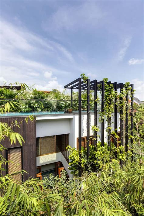 home vertical garden singaporean dream home with vertical gardens and rooftop