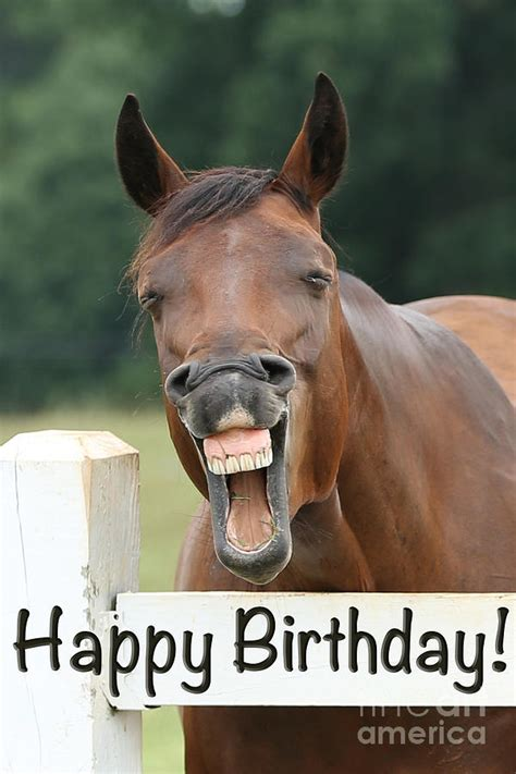 1000 images about horse party on pinterest horse happy birthday horse party pictures to pin on pinterest