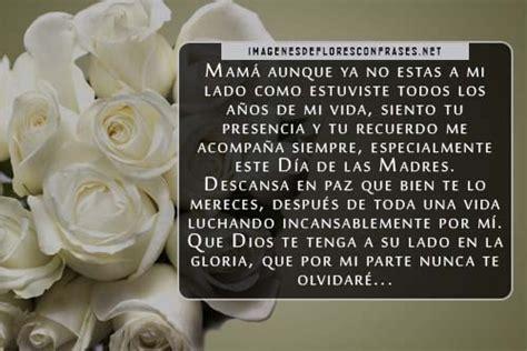 imagenes de rosas para una madre lindas im 225 genes de rosas blancas para una madre fallecida