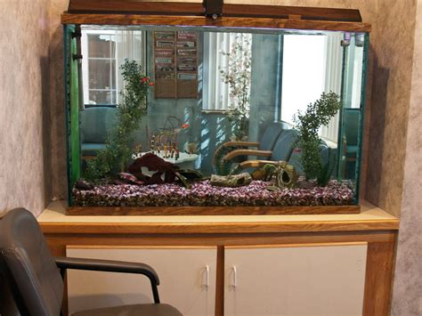 Office Fish Tank by Dental Office Fish Tank Picture1 Dentistry For Children
