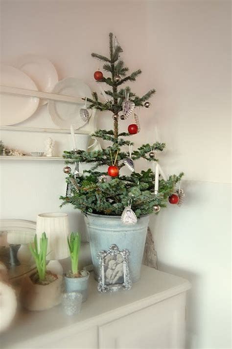 Attractive Small Bedroom #8: Brilliant-small-christmas-trees.jpg