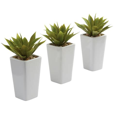 Mini Planters by Mini Agave Silk Plant With Planter Set Of 3 White
