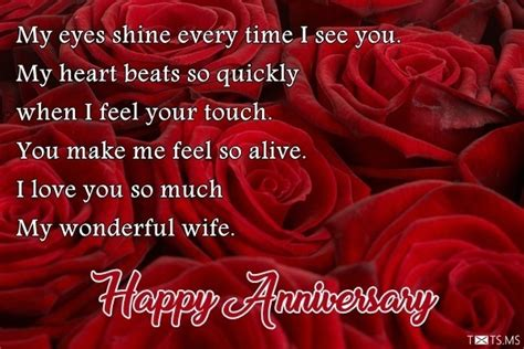 wedding anniversary wishes with roses my shine every time i see you txts ms