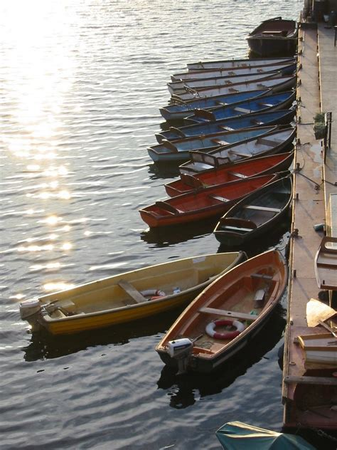 thames river boat hire richmond panoramio photo of rowing boats for hire at richmond