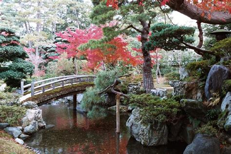 Imperial Garden West by Contemplating Kyoto Imperial Palace