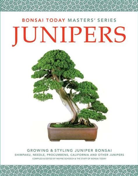 don t pinch books junipers don t pinch much bonsai bark