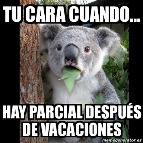 im genes memes vacaciones meme koala tu cara cuando hay parcial despu 233 s de