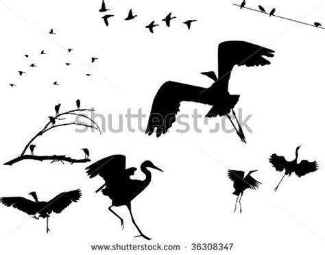 Best 10 Bird Silhouette Tattoos Ideas On Pinterest Bird Bird Silhouette Shoulder
