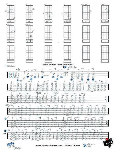 ukulele tutorial eddie vedder eddie vedder rise free ukulele tab by jeffrey thomas
