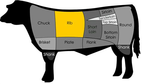 prime rib diagram what is the difference between a ribeye and rib steak