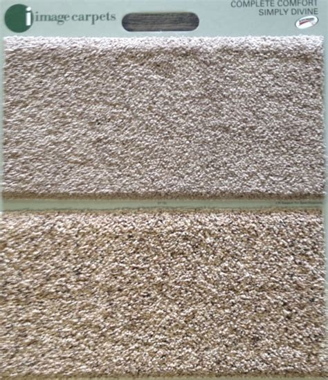 comfort carpet clean complex comfort and simply divine by image carpets