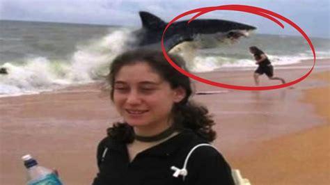 best shark attack top 10 shark attacks you won t believe