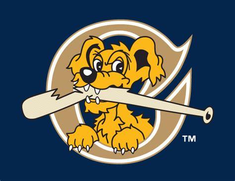charleston river dogs charleston riverdogs 2011 2015 cap logo diy iron on transfers v3 2 00